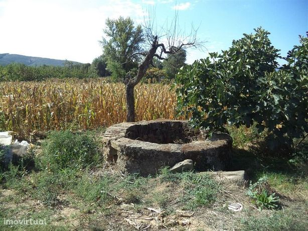 Terreno Capinha Fundão