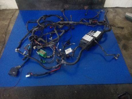 Wiązka komory silnika Ford Focus MK2 1.6d Stan BDB