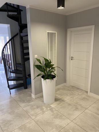 Apartament 4 pokojowy