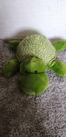 Maskotka żółw