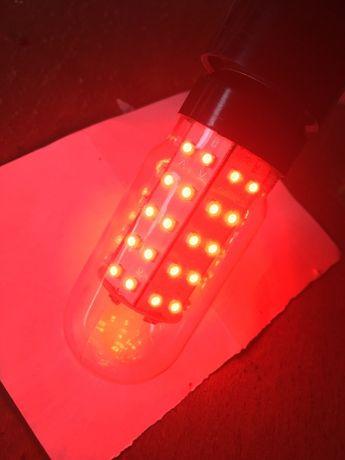 Лампа светодиодная красная LED 5w E27