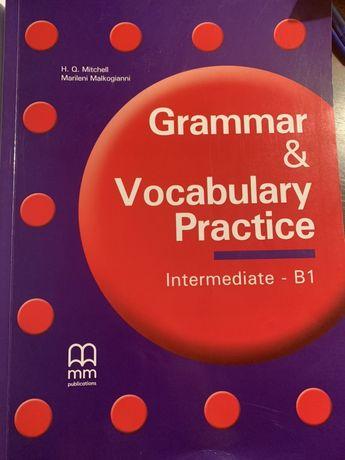 Grammar and vocabulary practice b1