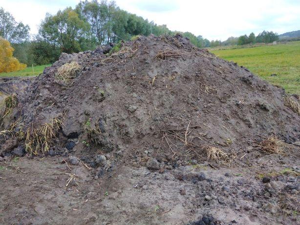 Ziemia, oddam ziemię łąkową