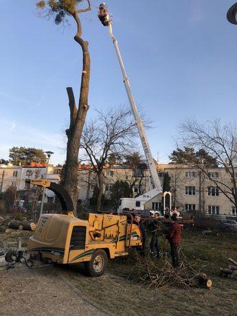 Wycinka drzew lasów działek podnosnik koszowy rebak vermeer
