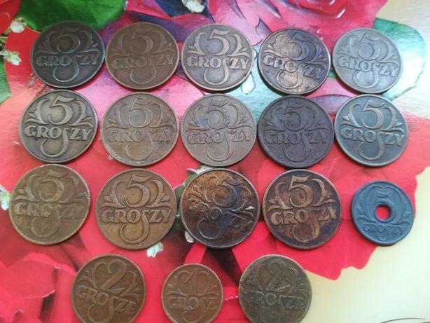 zestaw monet groszowych II RP zamienie