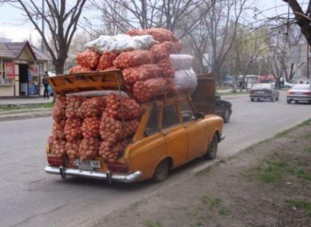 Ziemniaki ( 0,67zł kg)  WINETA, GALA, LILLY 15kg