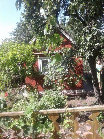 Дача с домиком в Мариуполе