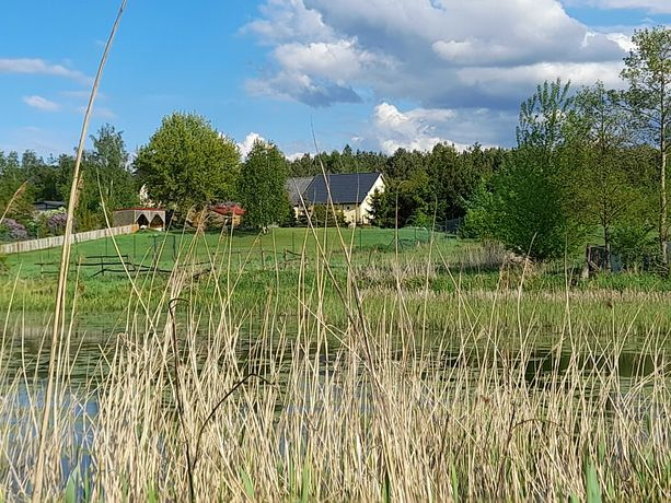 Dom 70 m2 ,ranczo 6 tys m2,blisko Fordonu