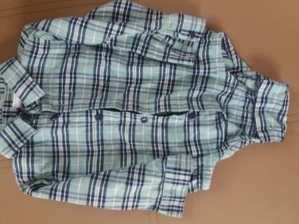 Koszula- body dla chłopca