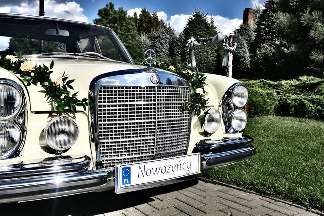Zabytkowy Mercedes, klasyk, samochód do ślubu, wynajem, Poznań