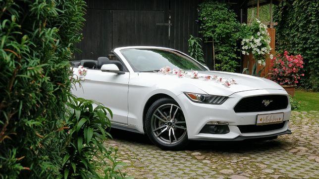 Auto do Ślubu Biały Mustang - Mazowieckie - Zapisy 2021