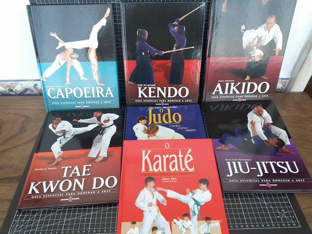 Jiu-jitsu, taekwondo, capoeira, karaté, judo, aikido, kendo