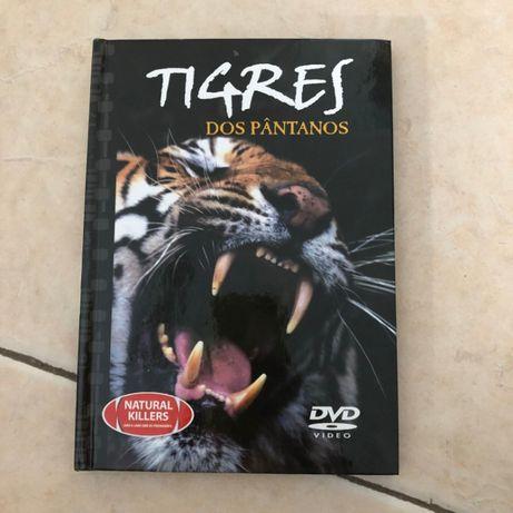Tigre dos Pântanos