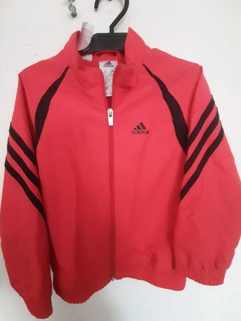 Bluza Adidas 116cm