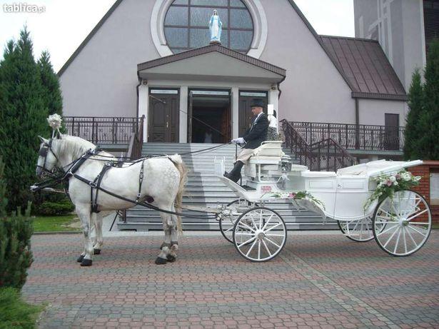 Kareta do ślubu