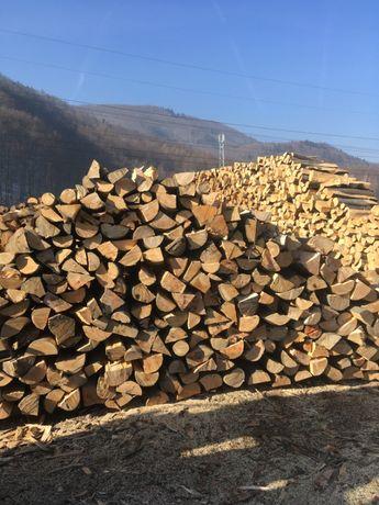 Drewno kominkowe opałowe buk dąb brzoza świerk