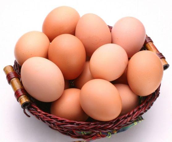 Яйца домашние 40грн