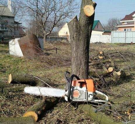 Спил деревьев, порезка на чурки, покол дров.
