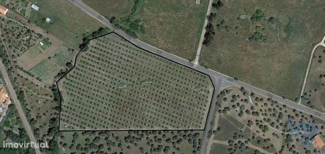 Terreno - 30000 m²