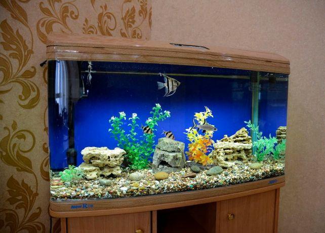Обслуживание аквариума, Чистка аквариумов/весь комплекс услуг