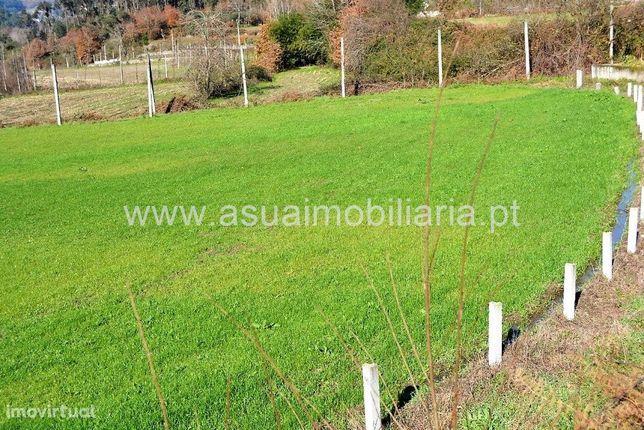 Terreno Agrícola e Bouça - Ajude