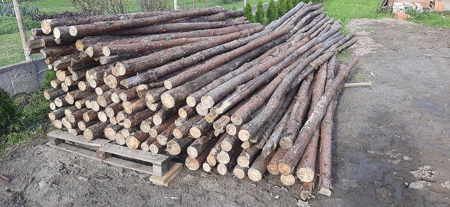 Stemple Budowlane Drewniane Sosnowe 300szt. Transport za opłatą