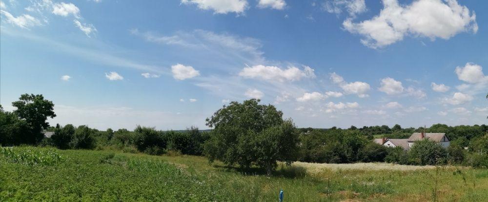 Продам земельну ділянку в с. Зарванці