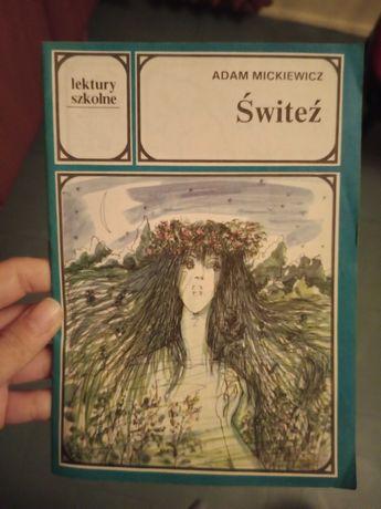Książki - lektury dla młodzieży szkolnej