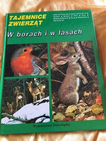 """""""Tajemnice zwierząt - w borach i lasach"""""""