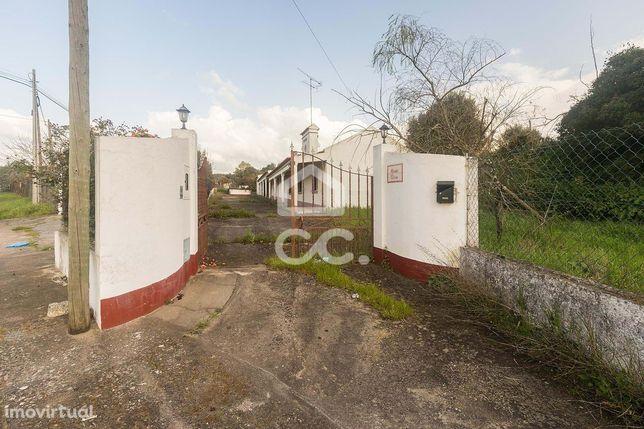 Quintinha de 2000 m2 com moradia T3 | Montemor-O-Novo