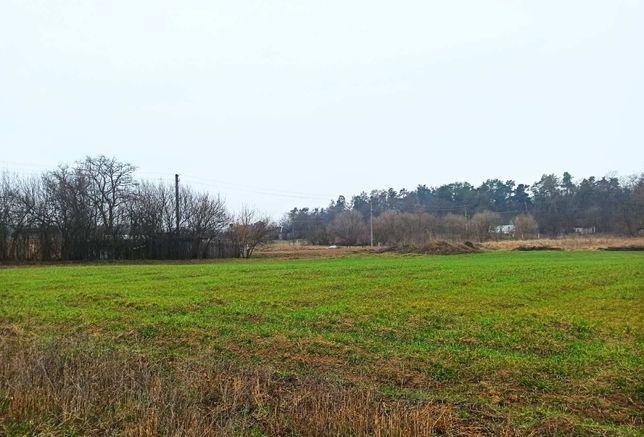 Продам ділянку 10 соток в Сулимівці, Бориспіль 20 км.
