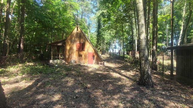 Działka rekreacyjna 1900 m plus 2 domki , KW , media, Wola Cyrusowa