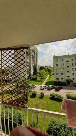 Wynajmę mieszkanie M3 ( 2 pokojowe ) Łódź Górna - Chojny  52m