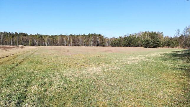 Działka rolna w miejscowości Tomczyn 1,50ha