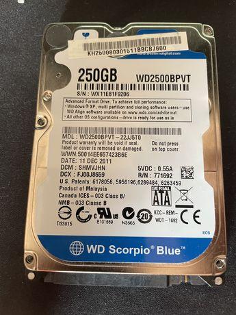 Dysk HDD 250 GB