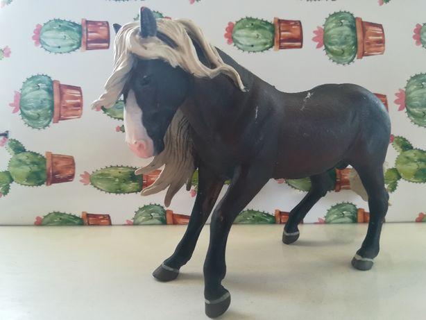 Koń collecta biała grzywa