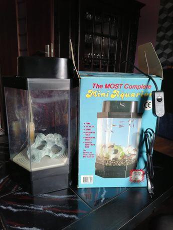 Mini akwarium dla rybek