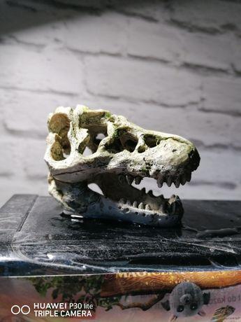 Czaszka ceramiczna do akwarium Dinozaura/Krokodyla