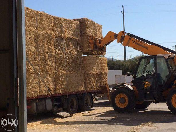 Palha de trigo*