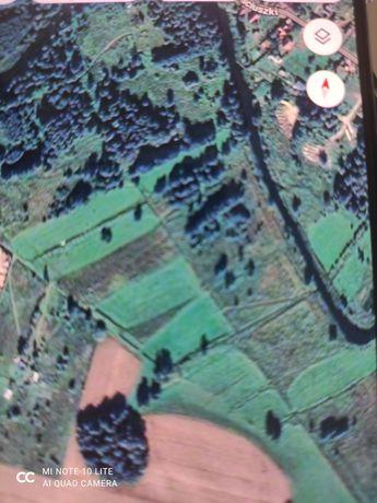 Zamienię działkę nad rzeką Ełk 9100m2 na mniejszą przy asfalcie