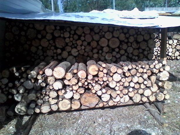 Vende-se Lenha de Eucalipto/Eucalyptus Firewood For Sale