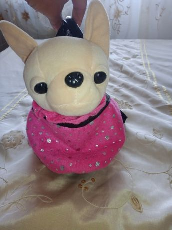 Собачка  в сумочке чичилав