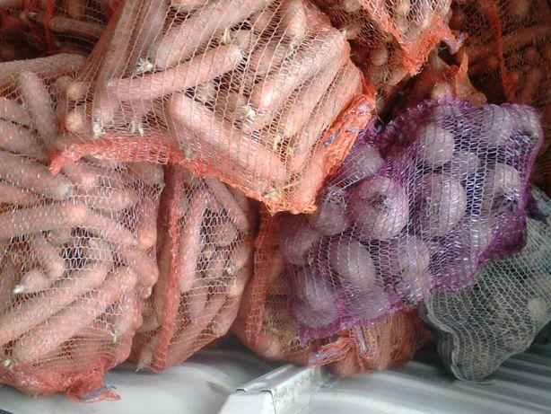 Marchew, Ziemniaki+5 cm, drobne kaliber 3-4 cm Gala, Gwiazda z dostawą