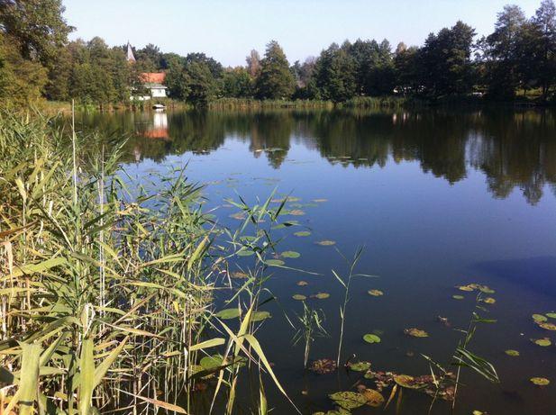 Działka budowlana- blisko malownicze jeziorko!