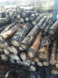 Продам дрова сосна сухостой