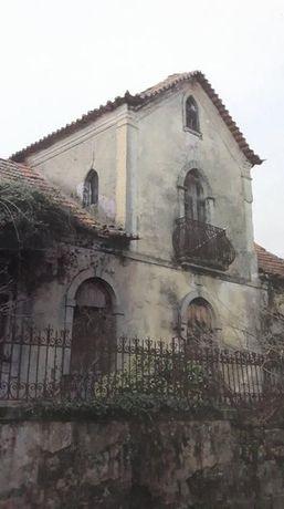 Quinta com casa antiga 4000m2 Pindelo
