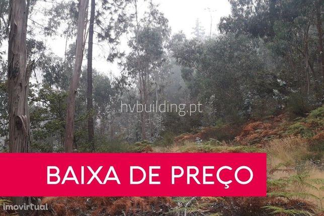 Terreno florestal com 36.300m² à venda em Panque (Barcelos)
