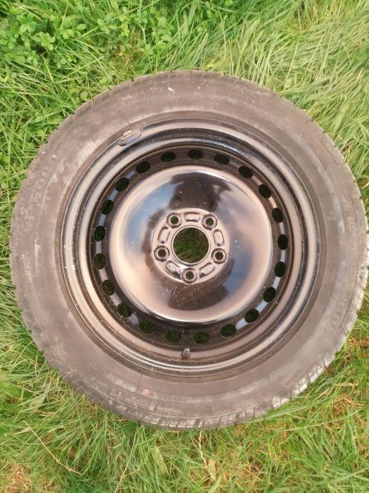 Pirelli P6000 Rogoźnik - image 1