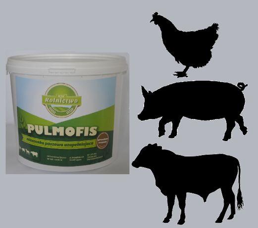 Pulmofis® - dodatek paszowy zapobiegający KASZLOWI u zwierząt-Wysyłka
