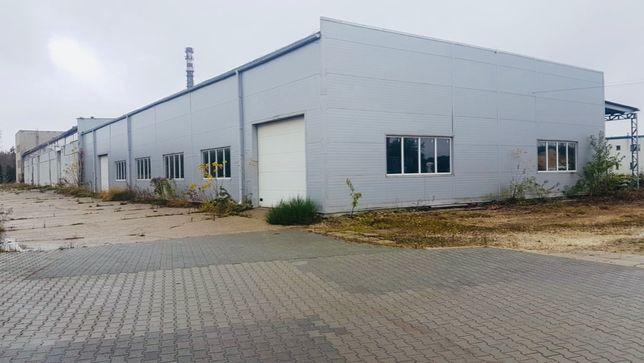 Hala produkcyjno-magazynowa 800 m2 z 2014 roku + plac manewrowy